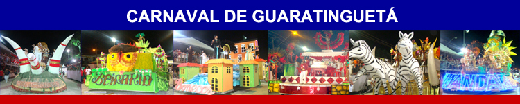 Carnaval 2014 Guara_banner