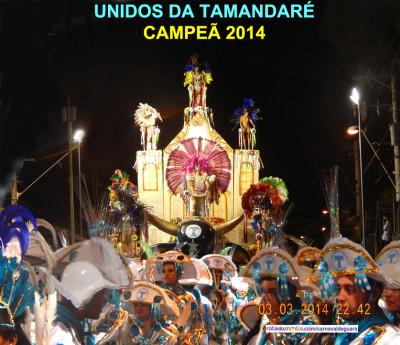 TAMANDARE_CAMPEA 2014